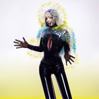 Bj�rk Speaks Out About 'Vulnicura' Leak for the First Time