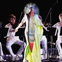 Bj�rk Overhauls 'Vulnicura' for 'Acoustic Version'