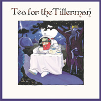 Cat Stevens Is Remaking His Classic 'Tea for the Tillerman'