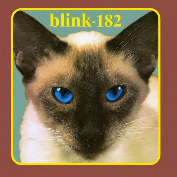 An Essential Guide To Blink 182