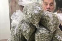 ​Tommy Chong Criticizes Canadian Government's Monopoly on Legal Weed