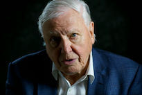 David Attenborough Joins Instagram, Breaks Internet