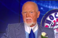 "Don Cherry Fired Following Xenophobic ""You People"" Rant"