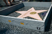 Someone Built a Tiny Wall Around Donald Trump's Star on the Hollywood Walk of Fame