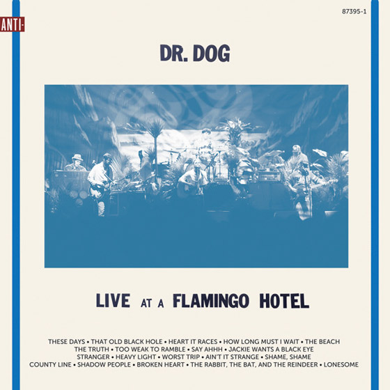 Dr. DogLive At A Flamingo Hotel