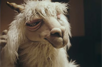 Fall Out Boy Are Getting Sued over Llama Puppets