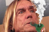 Iggy Pop Says He Tried Smoking Spiderwebs to Get High