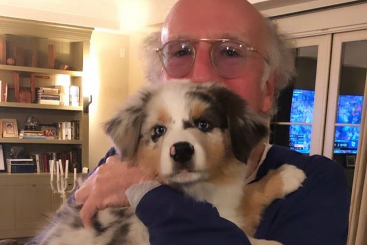 larry david named his dog after bernie sanders exclaim