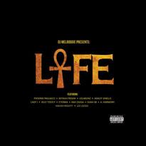 DJ Mel Boogie / Various DJ Mel Boogie Presents The L.I.F.E. Project