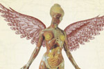 "Krist Novoselic and Steve Albini Discuss Nirvana's 'In Utero"" Reissue"