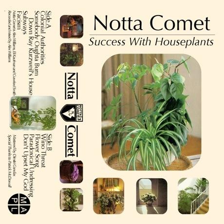 Notta Comet - 'Success With Houseplants' (album stream) • Music ...