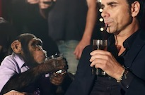 PETA Is Pissed at the Offspring for Using Chimps in Their Terrible New Music Video