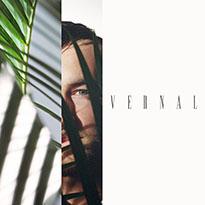 Past Palms Vernal