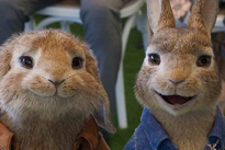 'Peter Rabbit 2: The Runaway' Brings Postmodern Irony to Its Story of Cute Bunnies Directed by Will Gluck