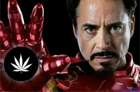 Robert Downey Jr. Shares His First Disneyland Experience — Getting Busted for Smoking Weed