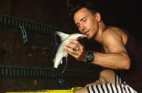 Cineplex to Offer Free 'Sharkwater' Screenings in Memory of Rob Stewart