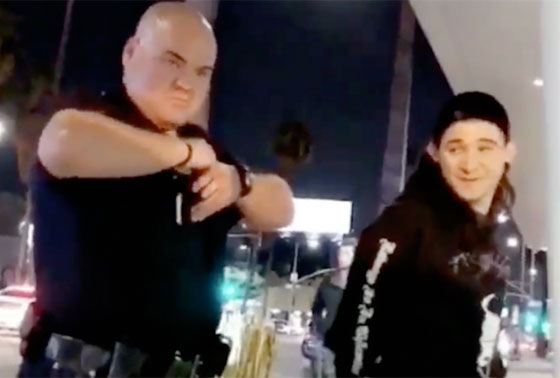 Skrillex Handcuffed by LAPD for Playing His Music
