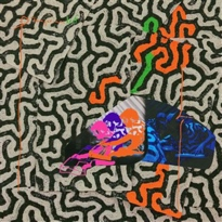 Animal Collective Detail 'Tangerine Reef' LP