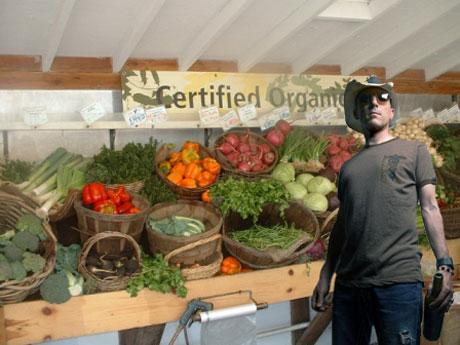 organic food questionnaire