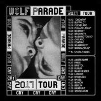 Wolf Parade Map Out 'Cry Cry Cry' Fall Tour Dates